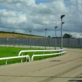 greyhound-racing-track