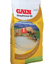 Gain-Greyhound-28-Biscuit